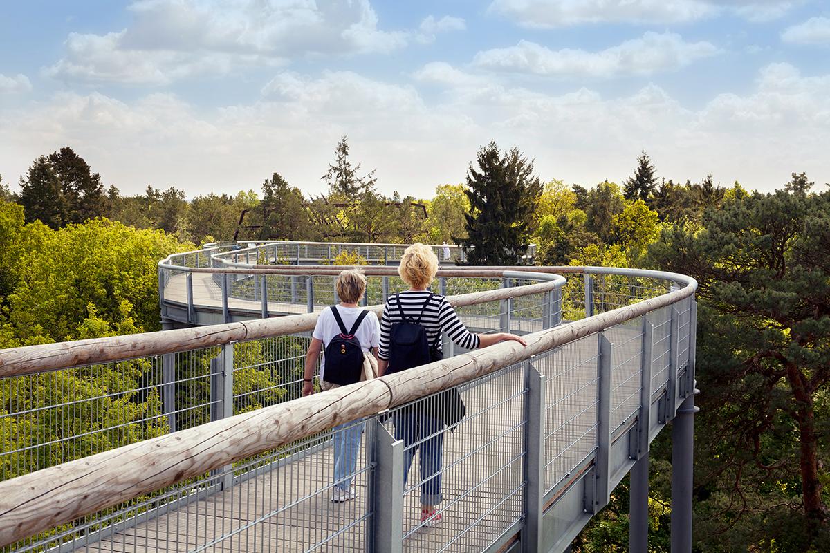 ©Baum&Zeit Baumkronenpfad Beelitz-Heilstätten Spaziergang Besucher Pfad Baumkronen