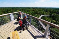 ©Baum&Zeit Baumkronenpfad Beelitz-Heilstätten Besucher barriefreie Aussichtsplattform Blick über Waldpark und Pfad