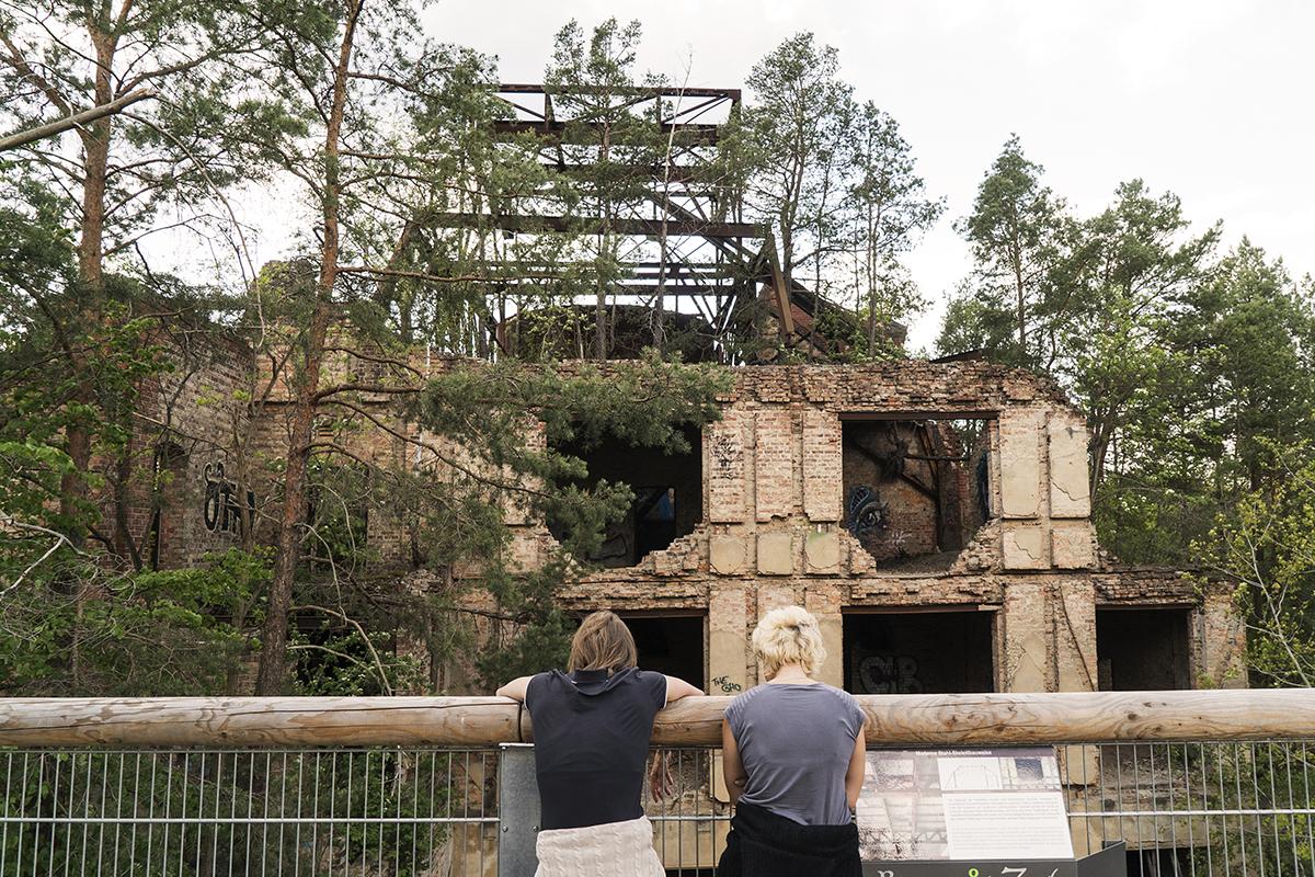 ©Baum&Zeit Baumkronenpfad Beelitz-Heilstätten Ruine Alpenhaus Dachwald Besucher