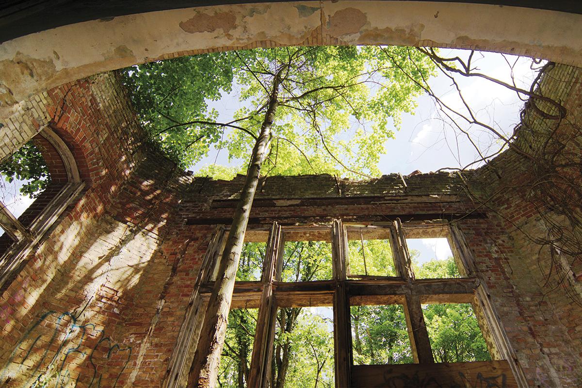 ©Baum&Zeit Baumkronenpfad Beelitz-Heilstätten Ruine Alpenhaus Speisesaal Erker mit Baum