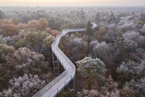 ©Baum&Zeit Baumkronenpfad Beelitz-Heilstätten Waldpark Pfad Horizont Winter
