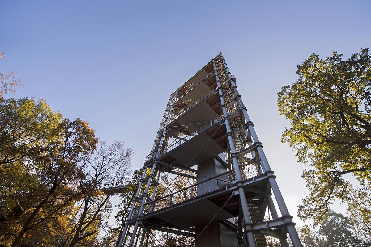 ©Baum&Zeit Baumkronenpfad Beelitz-Heilstätten Aussichtsturm