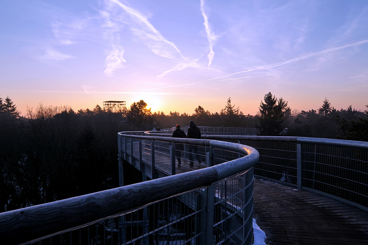 ©Baum&Zeit Baumkronenpfad Beelitz-Heilstätten Spaziergang mit Sonnenaufgang Pfad und Dachwald