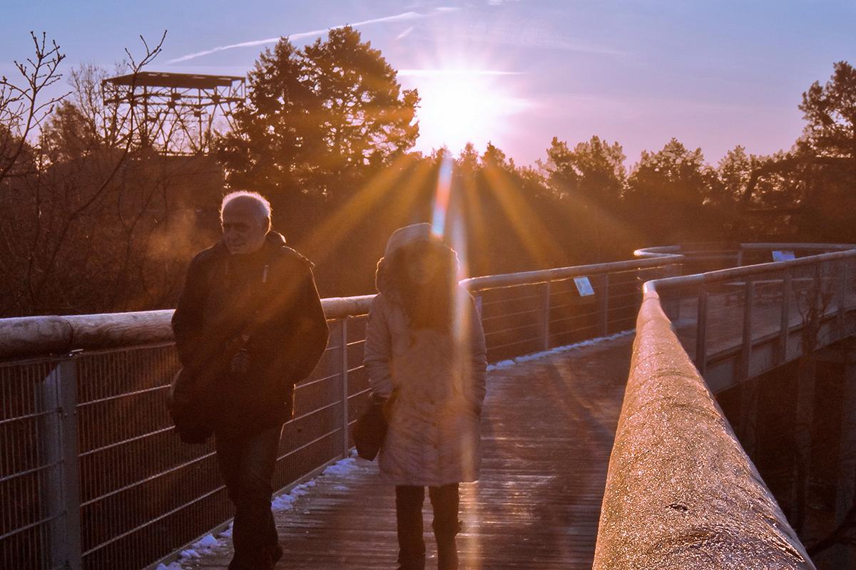 ©Baum&Zeit Baumkronenpfad Beelitz-Heilstätten Spaziergang auf dem Pfad bei Sonnenaufgang
