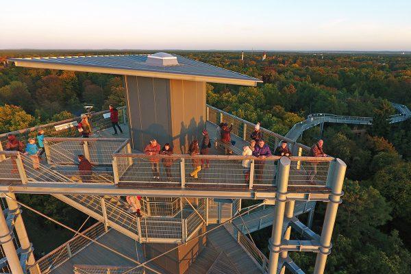 ©Baum&Zeit Baumkronenpfad Beelitz-Heilstätten Aussichtsturm im Waldpark
