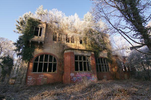 ©Baum&Zeit Baumkronenpfad Beelitz-Heilstätten Ruine Alpenhaus mit Dachwald im Winter
