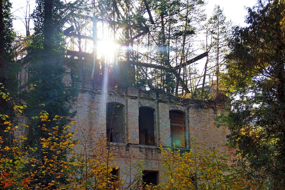 ©Baum&Zeit Baumkronenpfad Beelitz-Heilstätten Ruine Alpenhaus mit Dachwald