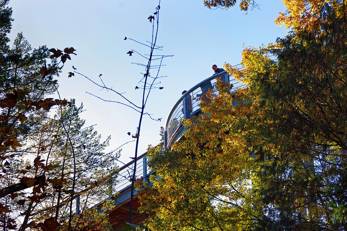 ©Baum&Zeit Baumkronenpfad Beelitz-Heilstätten Besucher auf Pfad Herbst