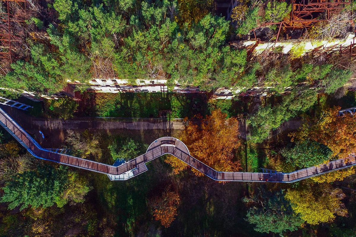 ©Baum&Zeit Baumkronenpfad Beelitz-Heilstätten Ruine Alpenhaus Dachwald und Pfad Luftaufnahme Foto: Patrick Pleul/dpa (Luftaufnahme mit einer Drohne)