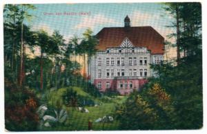 Baum&Zeit Baumkronenpfad Beelitz-Heilstätten historische Postkarte Alpenhaus mit Schlucht und Gartengestaltung