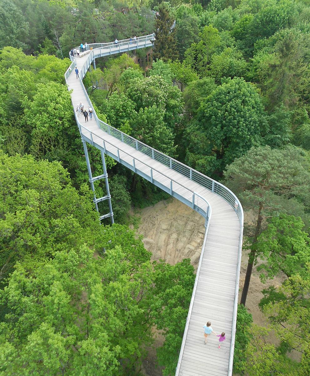 Pfad Waldpark Cornelia Resik Baum Und Zeit