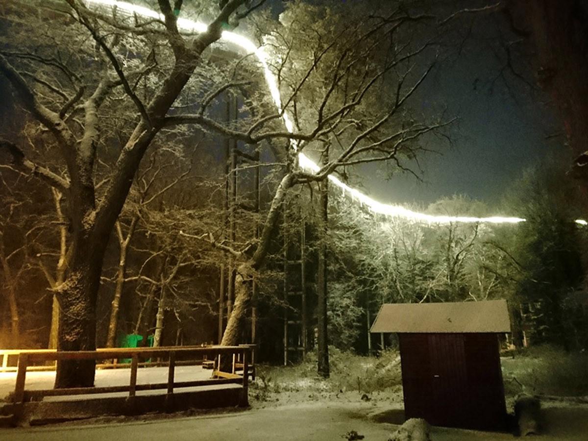 Winter - Foto Wettbewerb